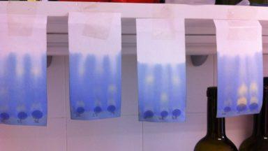 cromatografias